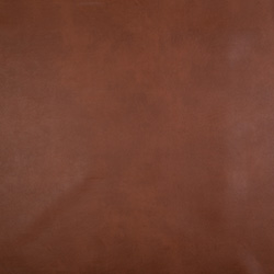 Belize Artificial Leather No 5