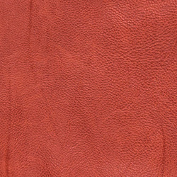 Borgo Artificial Leather Red