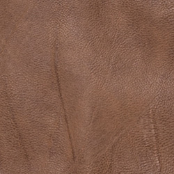 Borgo Artificial Leather Brown