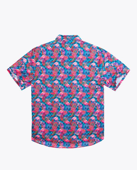 fs201808-flamingo-02