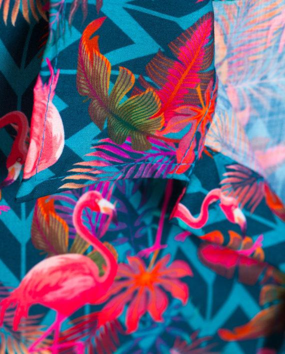 fs201808-flamingo-06