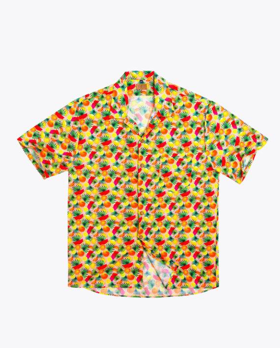 fs201816-summerfruit-01